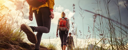 Hikers with backpacks walking in mountains at sunny day