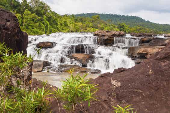 Cardamom Mountains