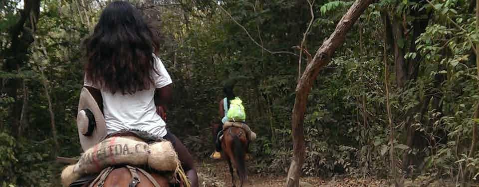 HORSEBACK RIDING THROUGH THE COLOMBIAN JUNGLE