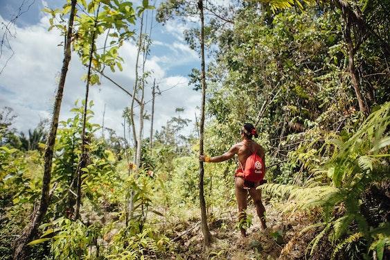 Indonesia Siberut