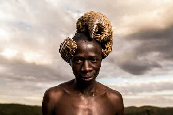 The Pangolin Men