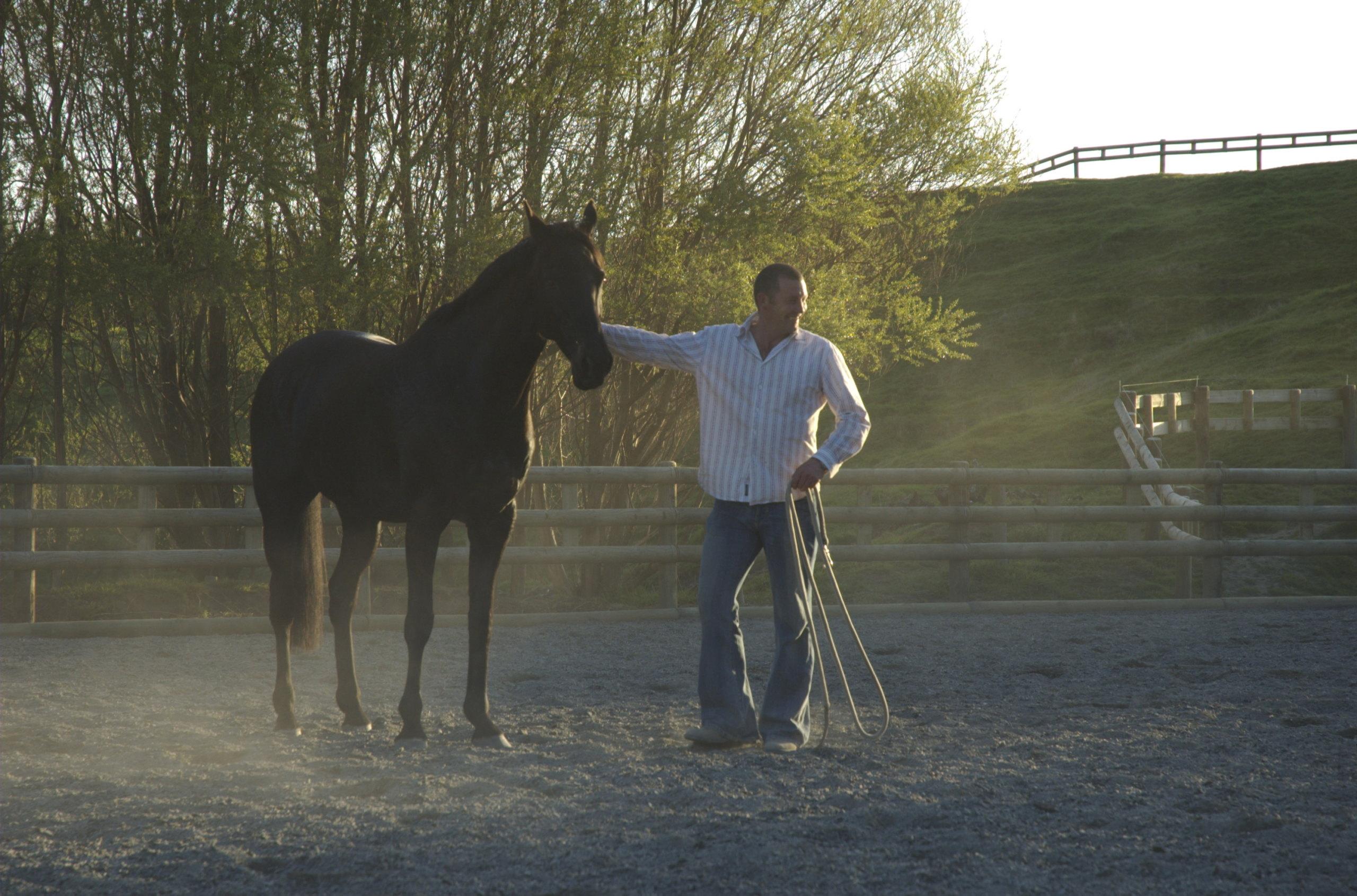 The Horse Whisperer From New Zealand