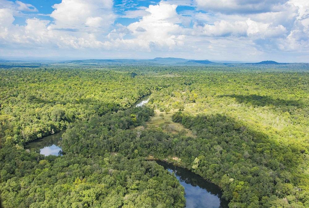 Cambodia Cardamom Mountains