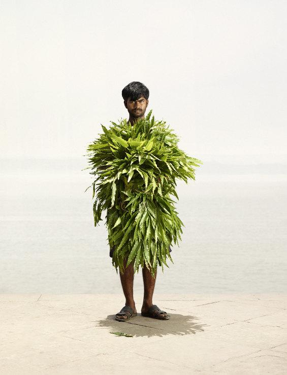 Dharmendra Singh with devdar leaves