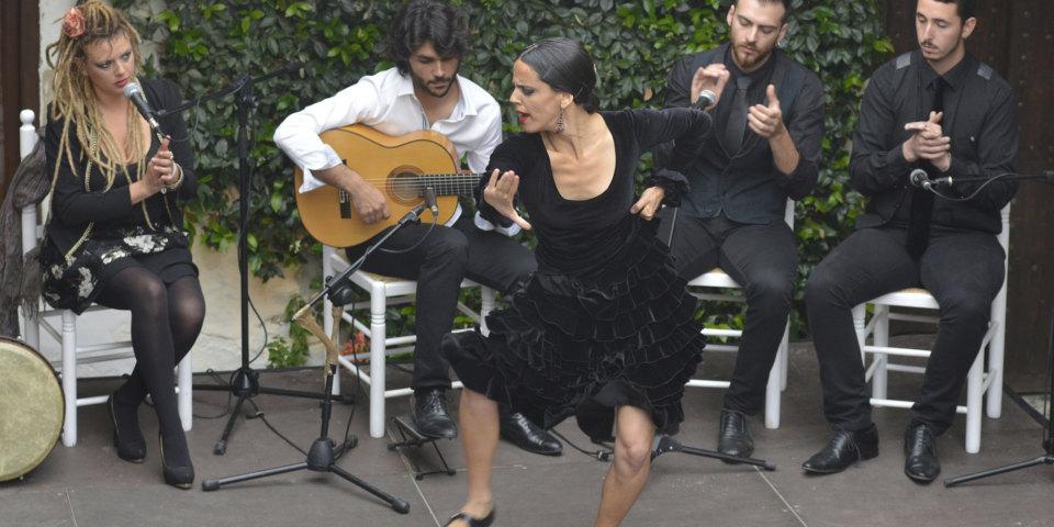A Journey Around The Flamenco Triangle