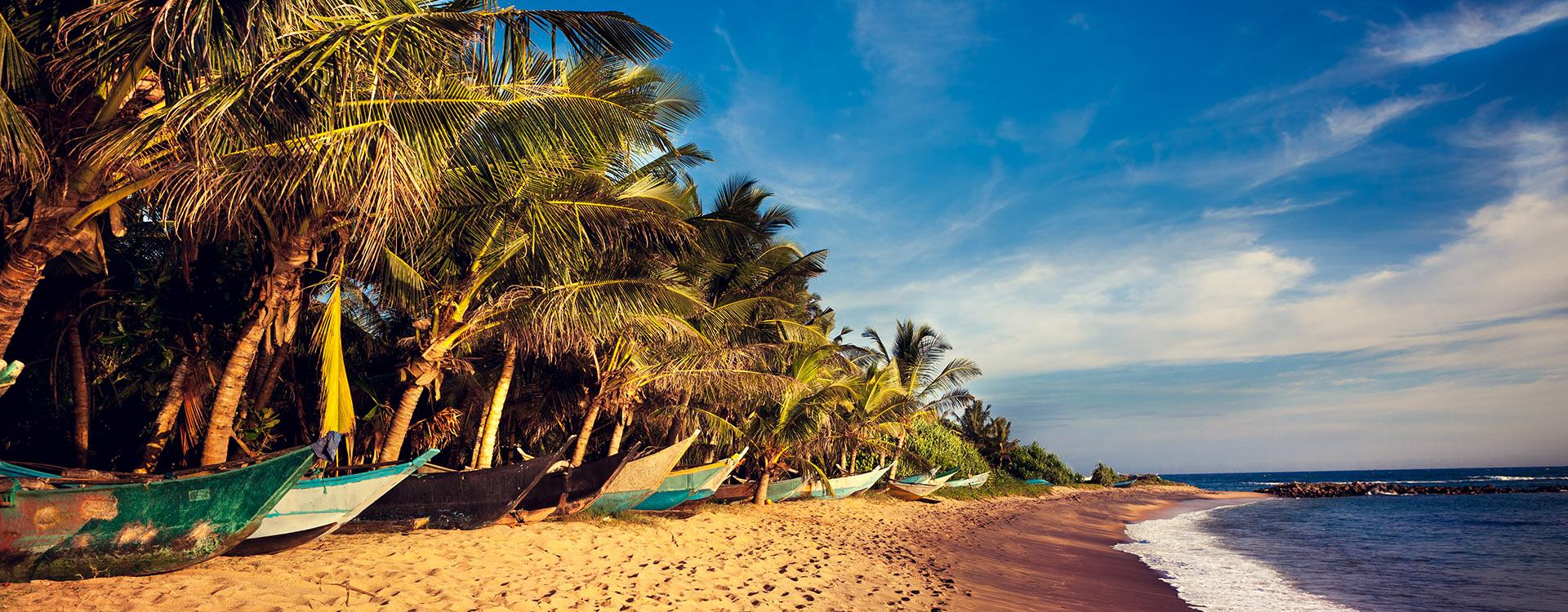 Boats on a Tropical Beach, Mirissa, South Sri Lanka