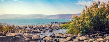 Seashore near Ein Eyov Waterfall in Tabgha, Sea of Galilee, Israel
