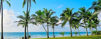 Beautiful tropical coast of Diani in Kenya