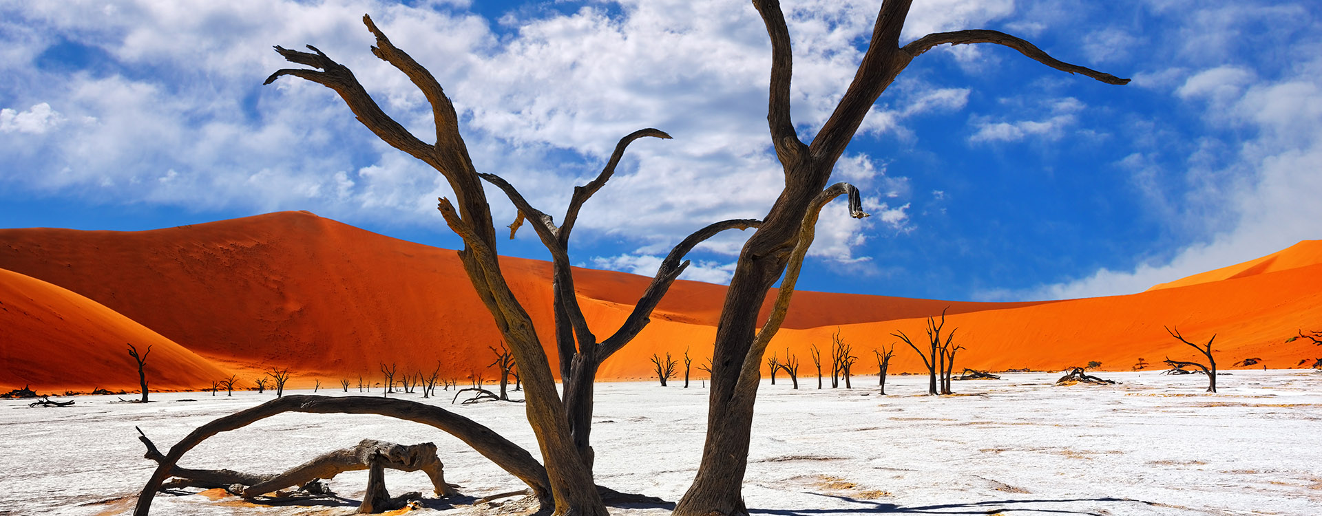 Namib-Naukluft National Park, Namibia, Africa