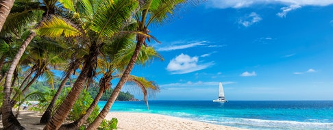 Sailing boat in the turquoise sea and exotic sandy beach with palm trees on Jamaica paradise island