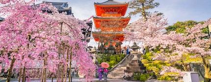 Kyoto, Japan springtime in the historic Higashiyama district art dawn