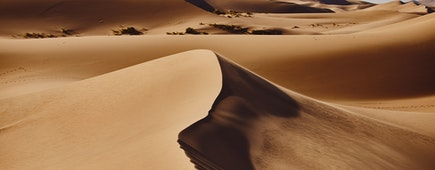 Sands Hongoryn Els in the Gobi Desert, Mongolia