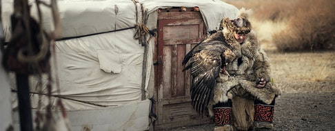 Kazakh Eagle Hunter in using trained golden eagles. Olgei,Western Mongolia