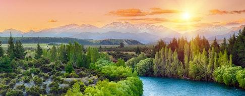 New Zealand landscape, Banks Peninsula, singular sheep