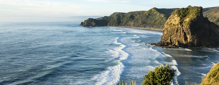 Piha Beach/ an overview of New Zealand's most famous west coast beach in late evening light