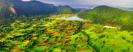 Aerial view of Ta Pa rice fields in Mekong Delta, Tri Ton town, An Giang province, Vietnam