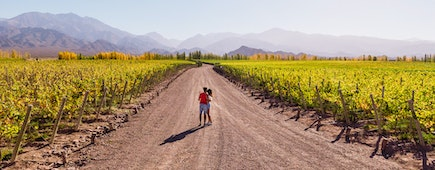 Honeymooners in Mendoza, Argentina